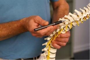 脊椎徒手療法研究所